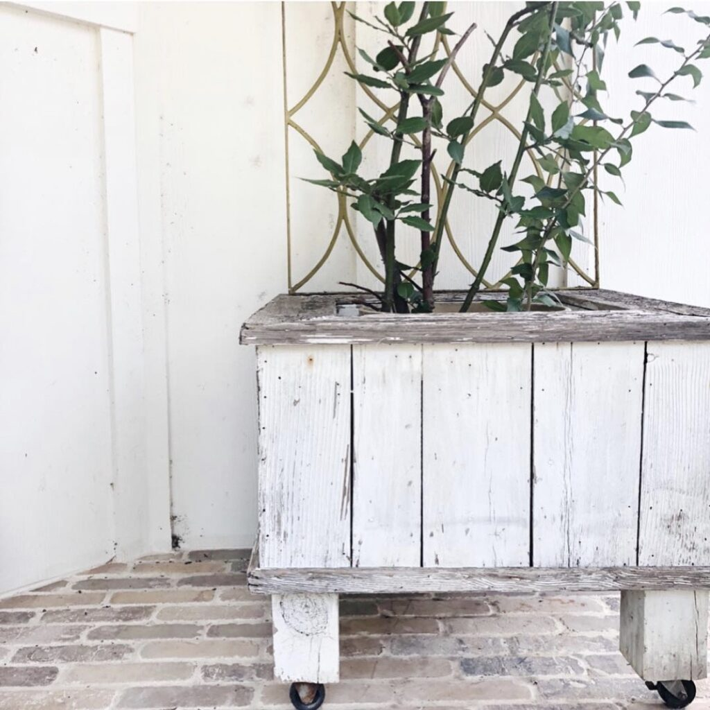 white vintage planter box that I use for a Christmas tree stand also holds my bay tree on the front porch when it is not Christmas time.