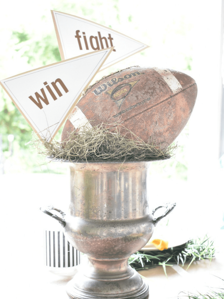 silver wine bucket used as a centerpiece for a footbll themed tablescaped, with green moss inside and a football tucked in