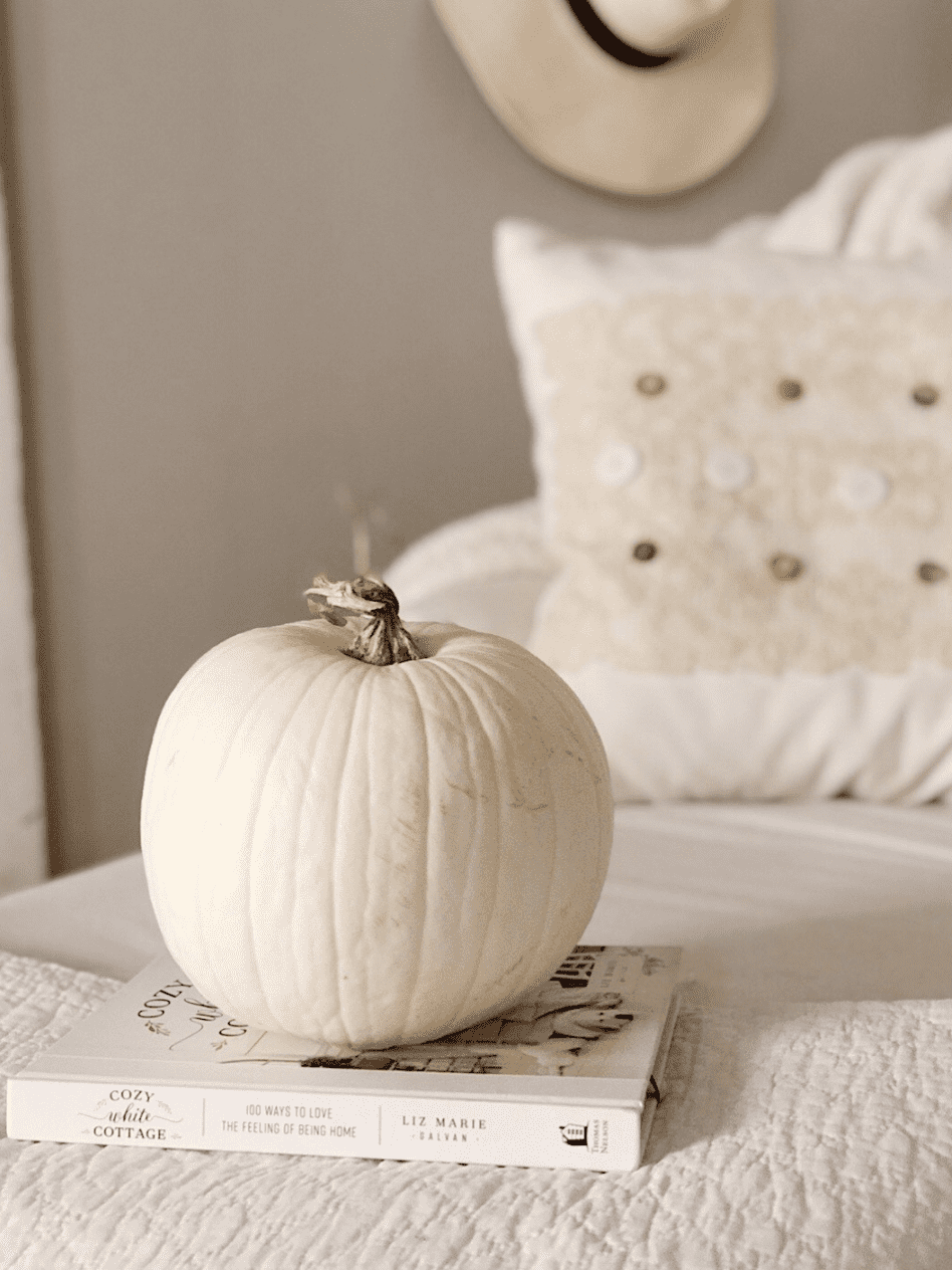 white pumpkin on top of book with white pillow in background